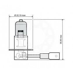 Žárovka H3 12V 55W